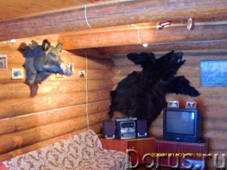 """Аренда дома """"Пряжа"""" - Дома, коттеджи и дачи - Двух этажный деревянный коттедж финского типа в Карели..., фото 2"""